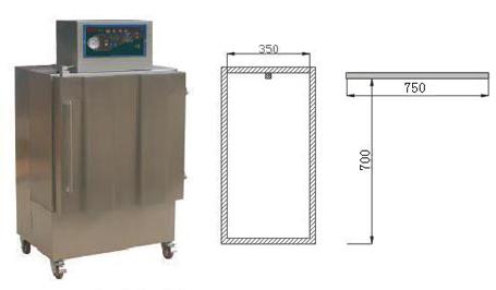 DZG-600立柜式真空封口机